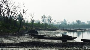 Addressing the South South's Environmental Emergency: The vital importance of environmental issues in securing stability and prosperity in the Niger Delta