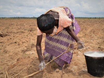 PRESS RELEASE: Sowing Hope for Agricultural Livelihoods to Grow Development in the Niger Delta