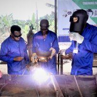 Innovating livelihood options for the planned restoration of Ogoniland
