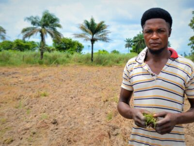 Testing the Community Block Farming approach to growing rice in the Niger Delta
