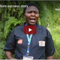 Piloting aquaculture livelihoods