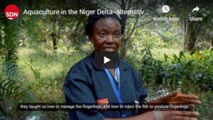 Aquaculture - alternative livelihoods in the Niger Delta